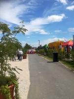 2017 Sommerfestival